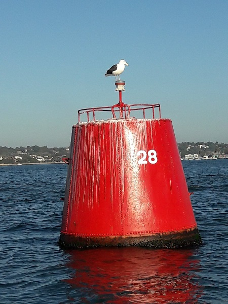 Port Lateral Buoys and Navigation marks